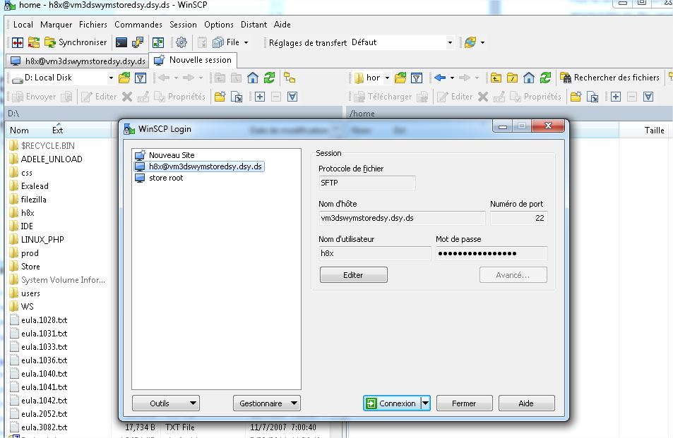Figure 9 : interface de connexion de WinSCP